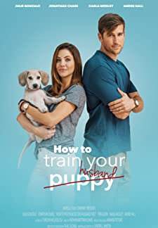 How to Train Your Husband (2018)